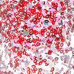 Tasse Nordic en verre à double paroi à lèvres et confettis