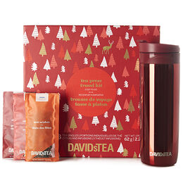 Tea Press Travel Kit