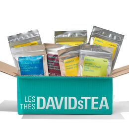 Coffret dégustation suprême - 15sacs de thé glacé Sélection des guides du thé