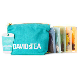 5 Faves Sachet Travel Pouch