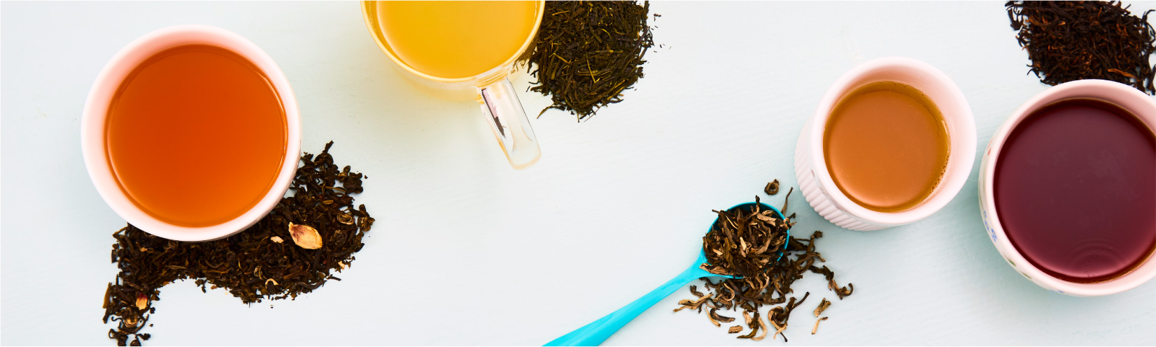 Find your perfect loose leaf tea