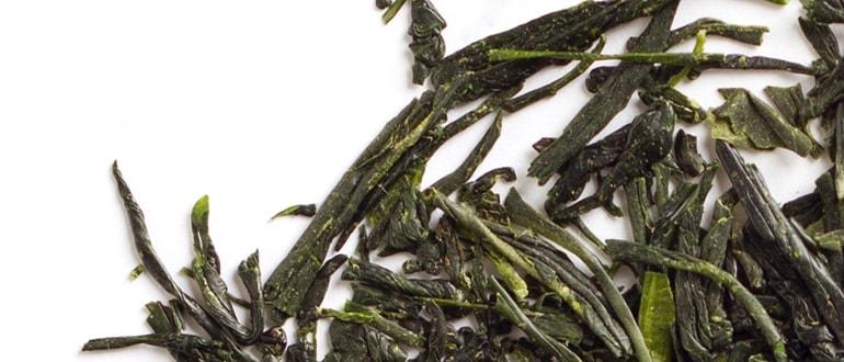 Organic Gyokuro Yamashiro tea