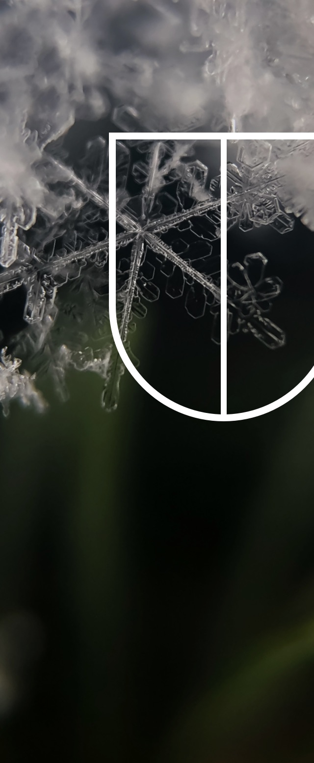 Close-up of a snow flake, with the DAVIDsTEA's symbol for Cold & Defence laid overtop.