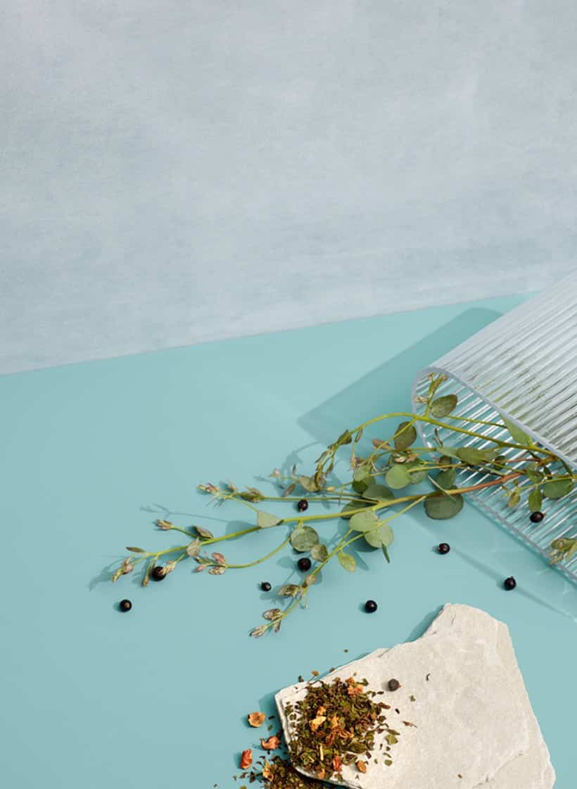Thé en feuilles sur un morceau de marbre. Couché sur un fond bleu avec des feuilles d'eucalyptus et des grains de poivre.