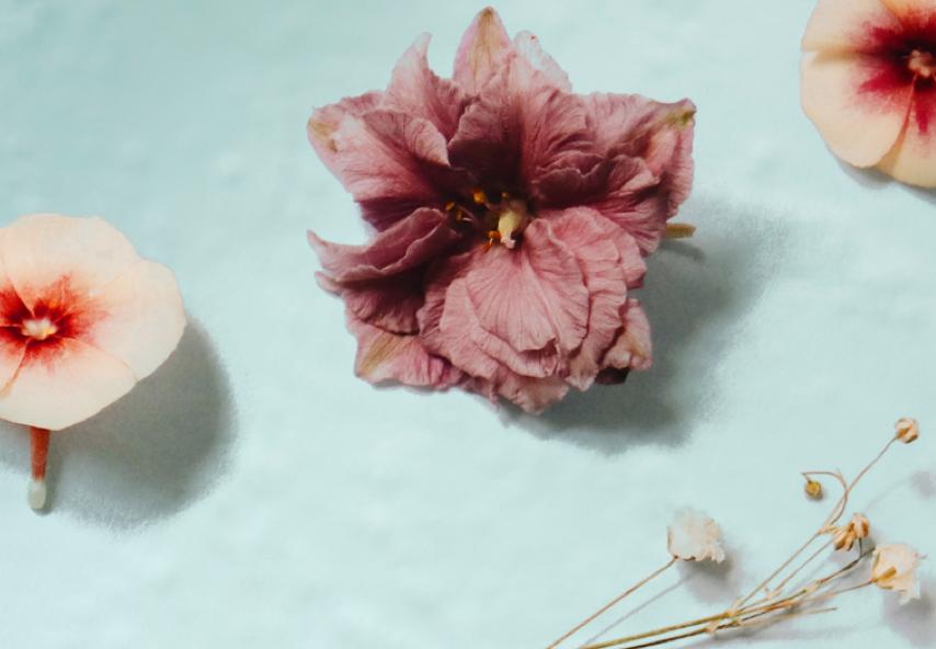 Floral iced teas