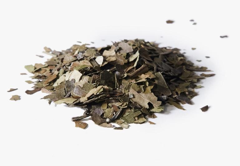 Des ingrédients du thé Guayusa biologique, placés sur une surface blanche.